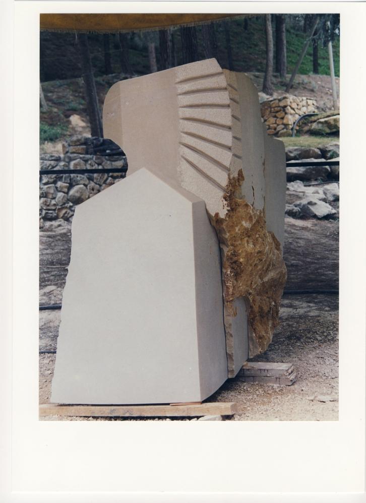 sunbird-maalot-96-1-1e0d4f93fcefcf3b878997a142baa30e